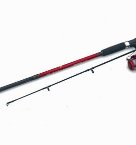 Shakespeare Firebird Rod & Reel Combo